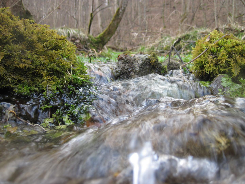 Trinkwasseergewinnung, Landkreis Starnberg