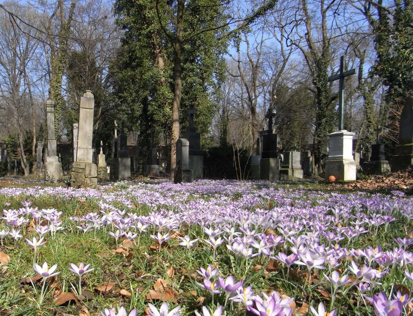 Alter Südlicher Friedhof, München