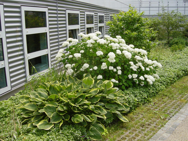 DTZ - Dräxlmaier Technologie Zentrum