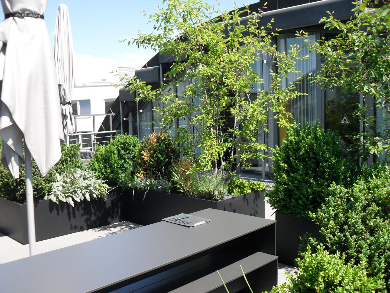 TÜV Süd Akademie - Dachterrassen