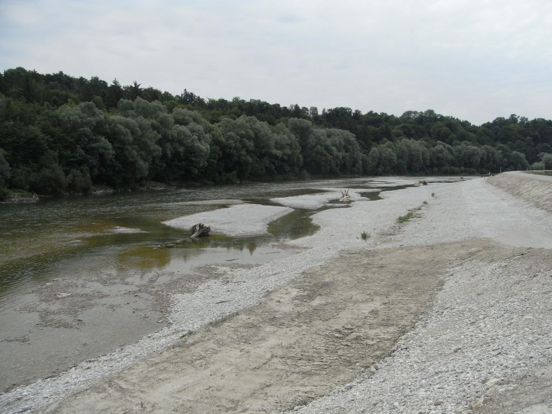 Deichsanierung südlich Grosshesseloher Wehr, Landkreis München