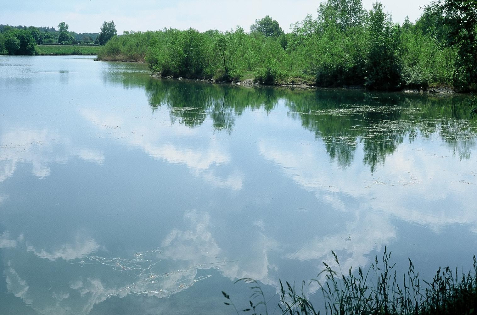 Machbarkeitsstudie zum Ausbau des Böhmerweihers als Badegewässer, München
