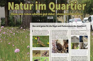Umweltinformationskonzept Quartiersentwicklung Paul-Gossen-Strasse / Nürnberger Strasse, Erlangen